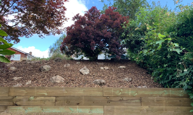 Landscaping-services 6